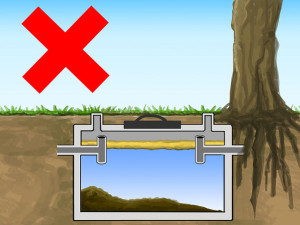 Septic Tips